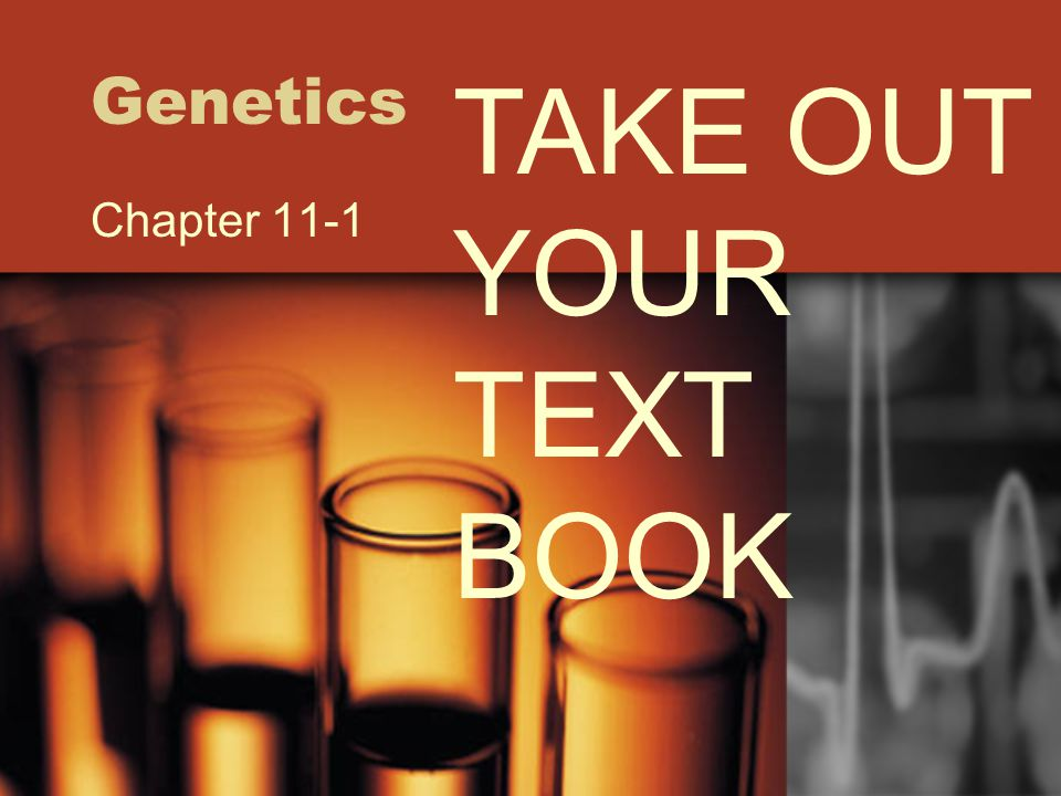 Genetics Chapter 11-1 TAKE OUT YOUR TEXT BOOK