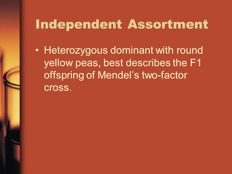 Independent Assortment Heterozygous dominant with round yellow peas, best describes the F1 offspring of Mendel's two-factor cross.