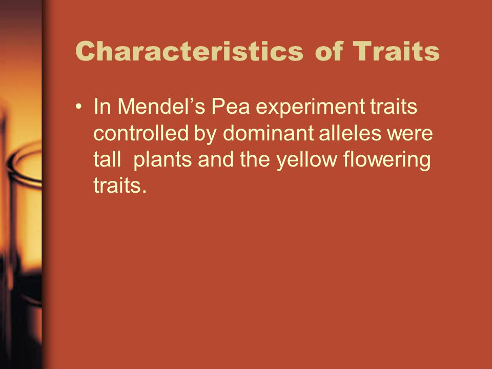 Characteristics of Traits In Mendel's Pea experiment traits controlled by dominant alleles were tall plants and the yellow flowering traits.