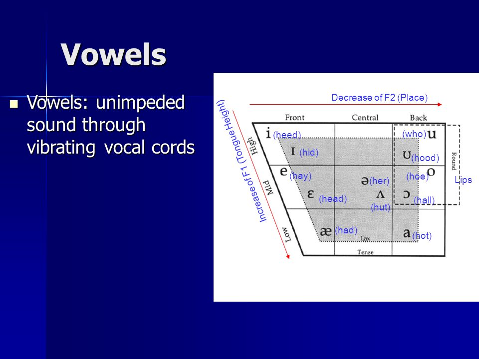 (heed) (hid) (hay) (head) (had) (hot) (hoe) (hood) (who) (hall) (hut) (her) Decrease of F2 (Place) Increase of F1 (Tongue Height) Vowels Vowels: unimpeded sound through vibrating vocal cords Vowels: unimpeded sound through vibrating vocal cords Lips