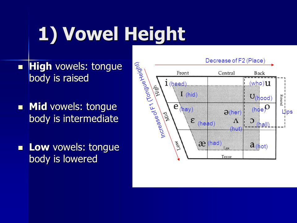 1) Vowel Height High vowels: tongue body is raised High vowels: tongue body is raised Mid vowels: tongue body is intermediate Mid vowels: tongue body is intermediate Low vowels: tongue body is lowered Low vowels: tongue body is lowered (heed) (hid) (hay) (head) (had) (hot) (hoe) (hood) (who) (hall) (hut) (her) Decrease of F2 (Place) Increase of F1 (Tongue Height) Lips