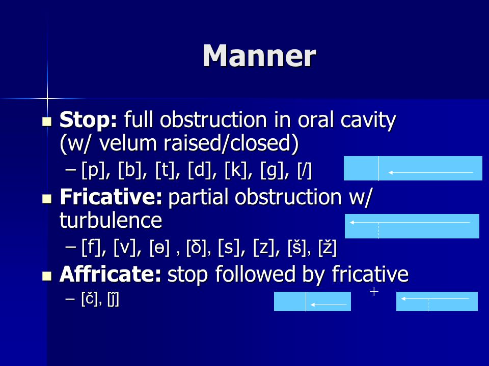 Manner Stop: full obstruction in oral cavity (w/ velum raised/closed) Stop: full obstruction in oral cavity (w/ velum raised/closed) –[p], [b], [t], [d], [k], [g], [/] Fricative: partial obstruction w/ turbulence Fricative: partial obstruction w/ turbulence –[f], [v], [ө], [δ], [s], [z], [š], [ž] Affricate: stop followed by fricative Affricate: stop followed by fricative –[č], [ĵ] +