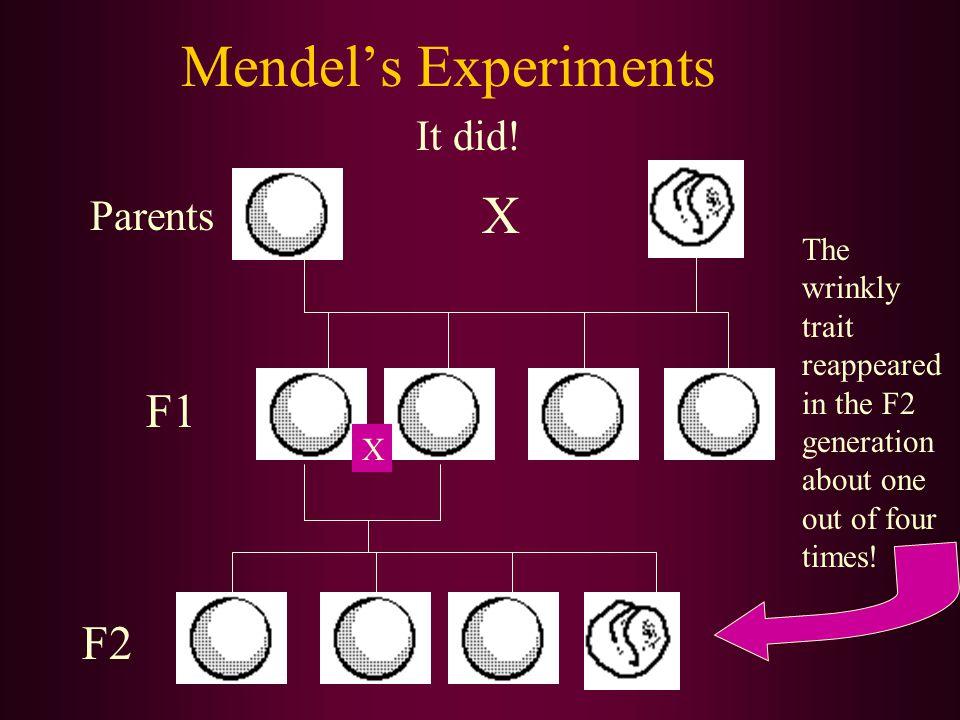 Mendel's Experiments It did.