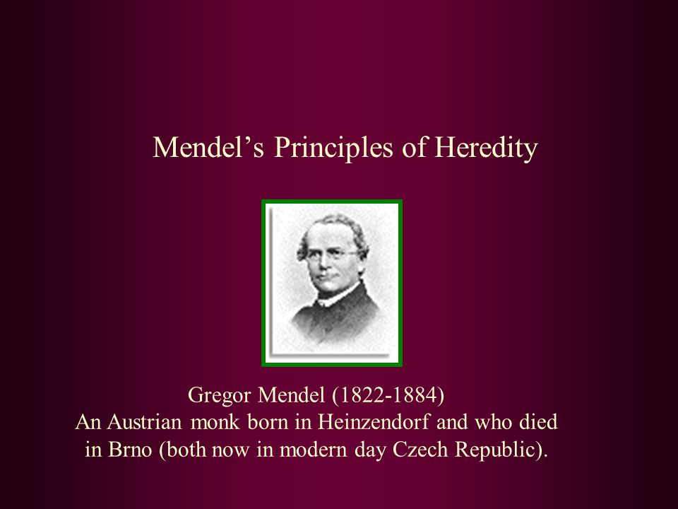 Mendel tried the same experiment to examine the transmission of other traits, such as flower colour.
