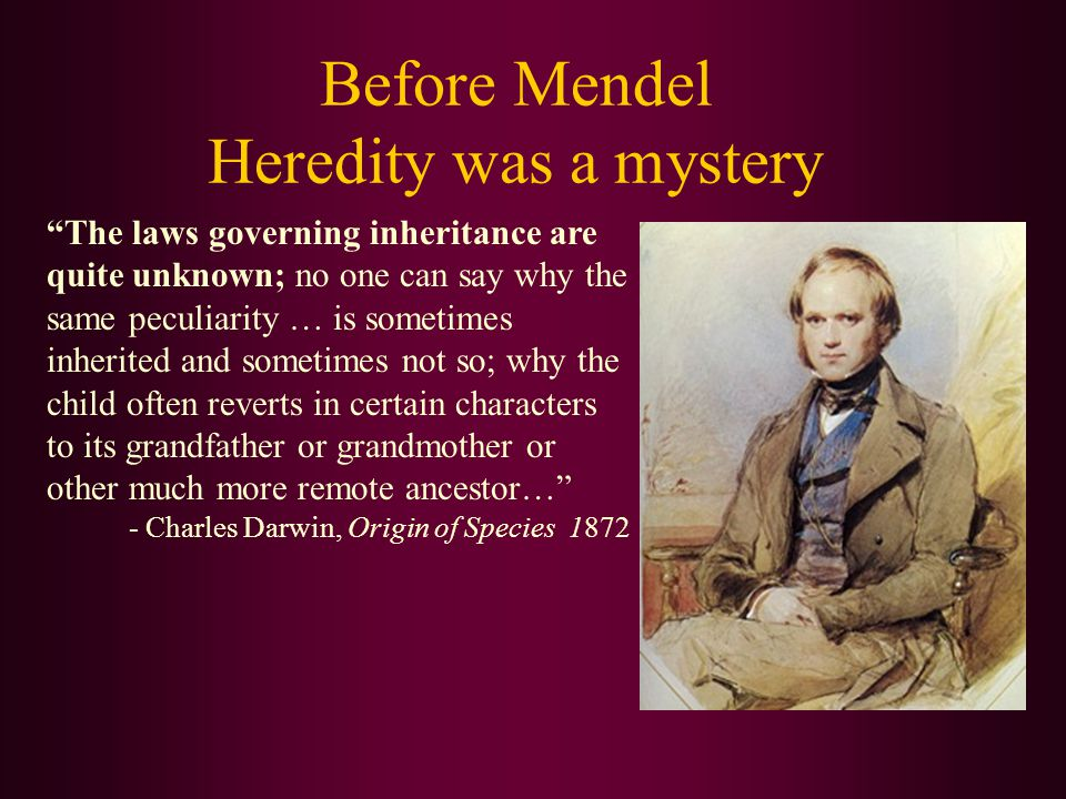 Gregor Mendel (1822-84) Mendel's Principles of Heredity As a substitute teacher at a technical school, Mendel conducted experiments on thousands of plants between 1856-1863.