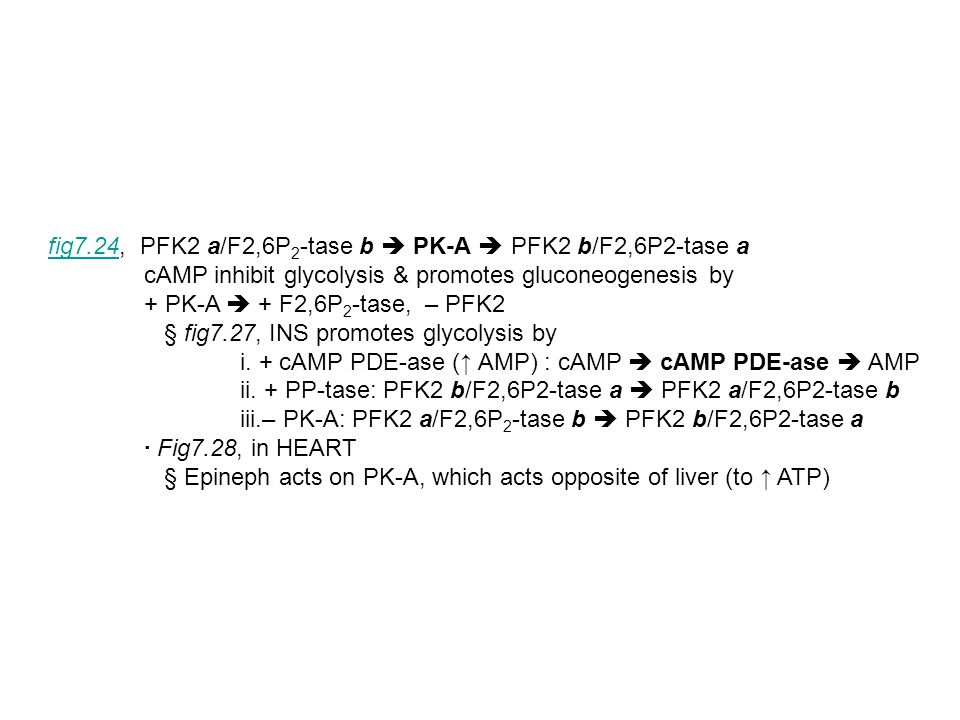 fig7.24fig7.24, PFK2 a/F2,6P 2 -tase b  PK-A  PFK2 b/F2,6P2-tase a cAMP inhibit glycolysis & promotes gluconeogenesis by + PK-A  + F2,6P 2 -tase, –