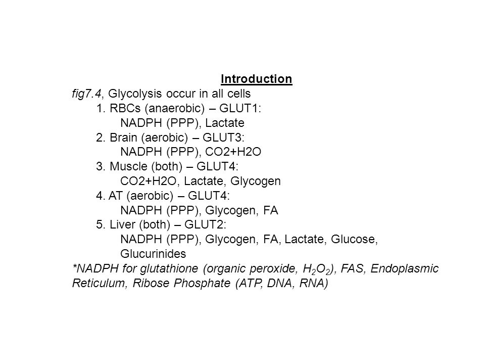 Introduction fig7.4, Glycolysis occur in all cells 1. RBCs (anaerobic) – GLUT1: NADPH (PPP), Lactate 2. Brain (aerobic) – GLUT3: NADPH (PPP), CO2+H2O