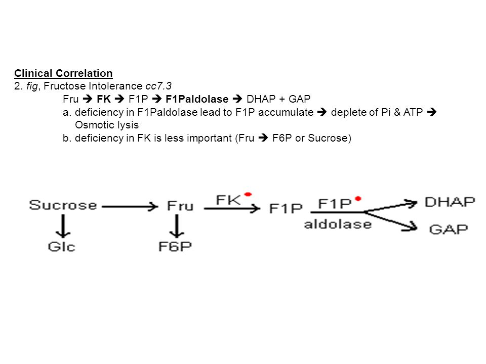 Clinical Correlation 2. fig, Fructose Intolerance cc7.3 Fru  FK  F1P  F1Paldolase  DHAP + GAP a. deficiency in F1Paldolase lead to F1P accumulate