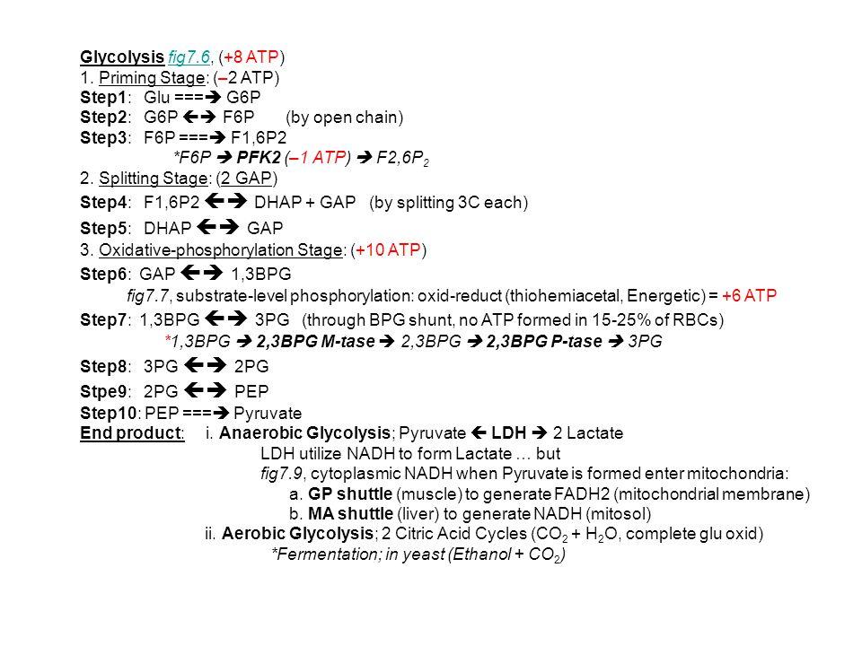 Glycolysis fig7.6, (+8 ATP)fig7.6 1. Priming Stage: (–2 ATP) Step1: Glu ===  G6P Step2: G6P  F6P (by open chain) Step3: F6P ===  F1,6P2 *F6P  PFK