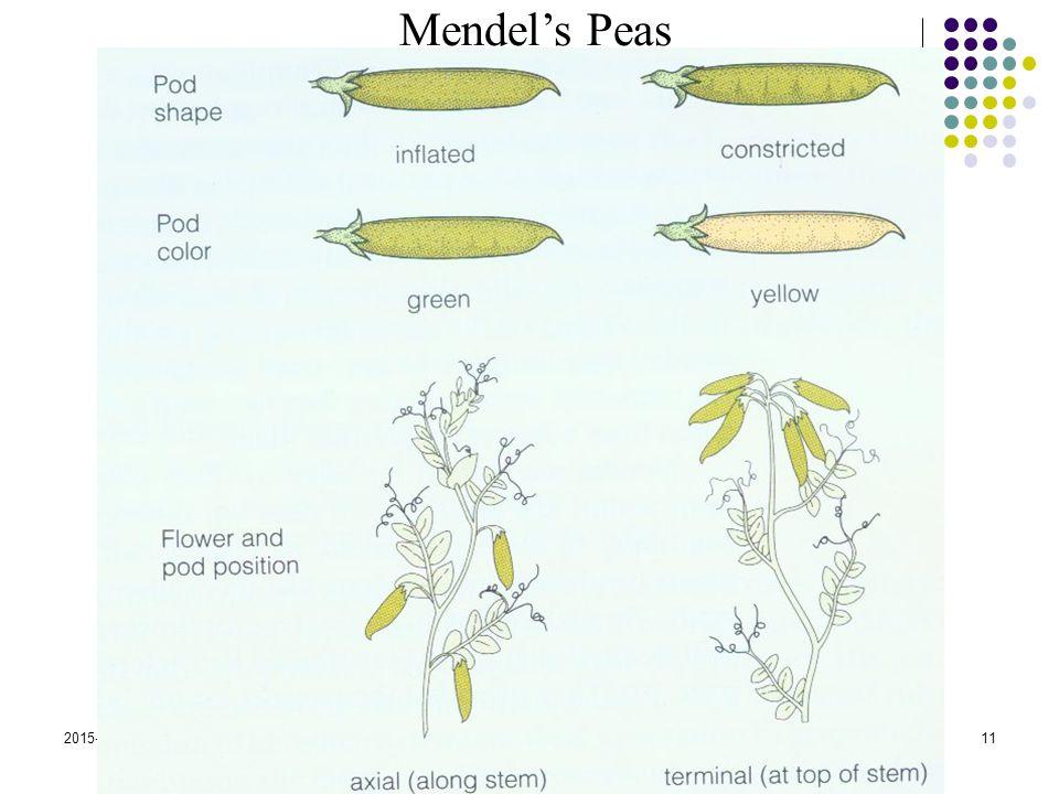 2015-4-17EECS 73011 Mendel's Peas