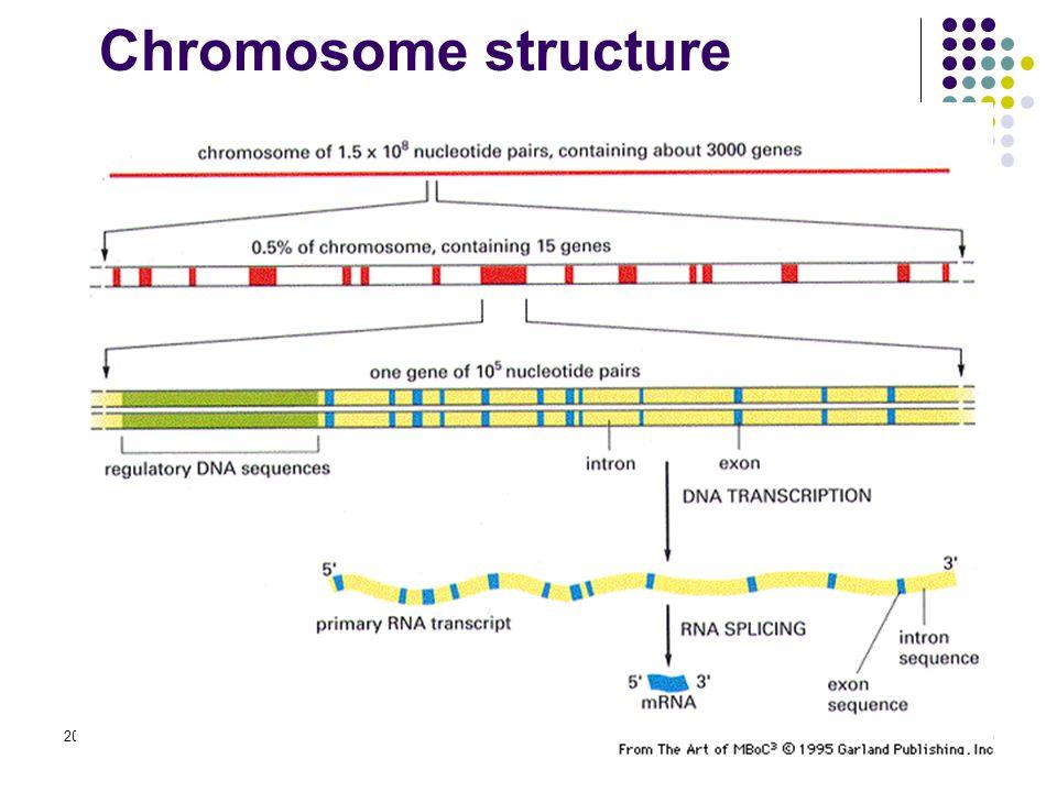 2015-4-17EECS 73029 Chromosome structure