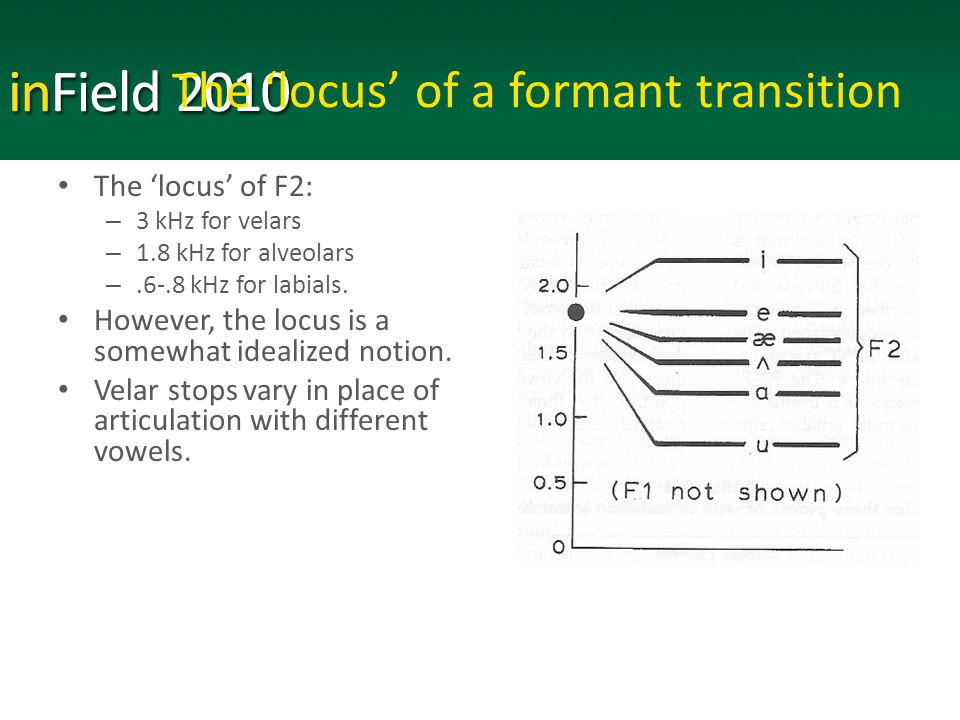 The 'locus' of a formant transition The 'locus' of F2: – 3 kHz for velars – 1.8 kHz for alveolars –.6-.8 kHz for labials.