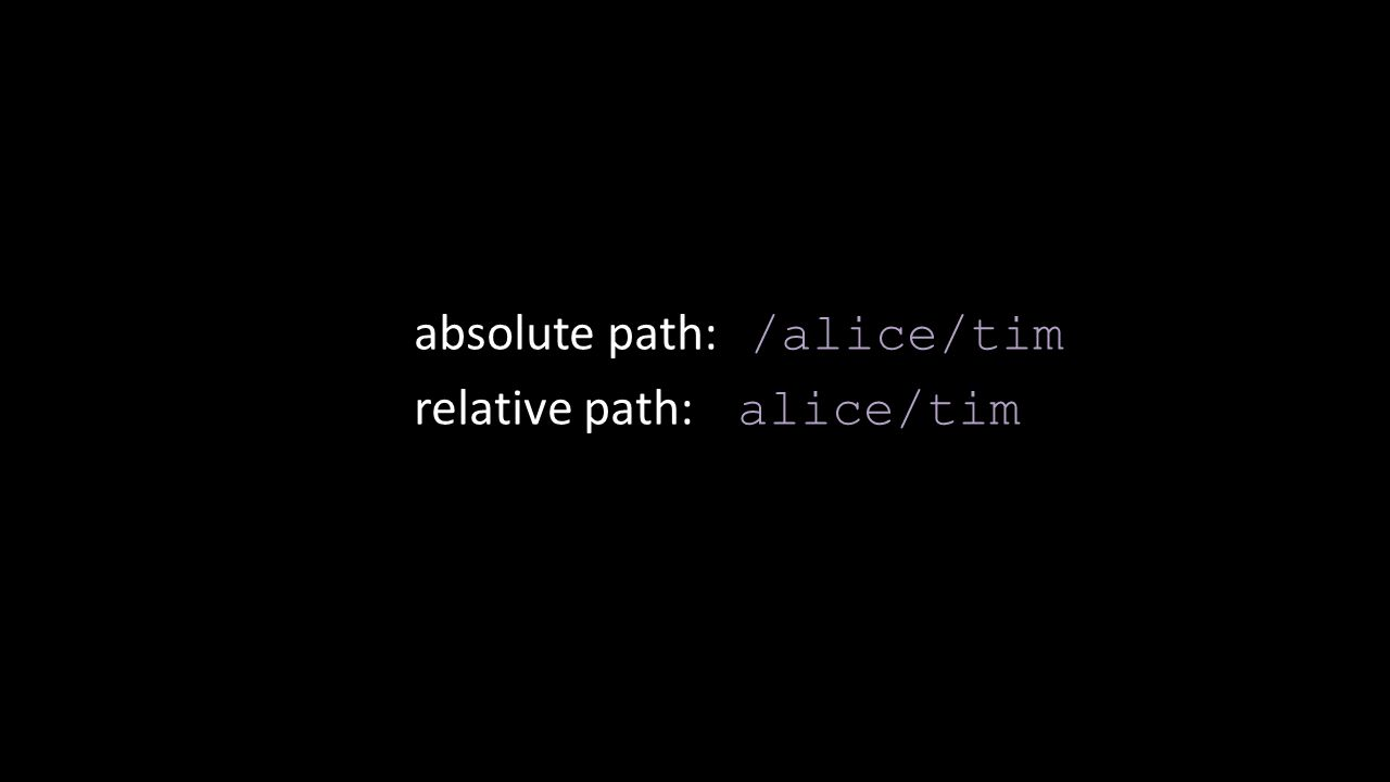 absolute path: /alice/tim relative path: alice/tim