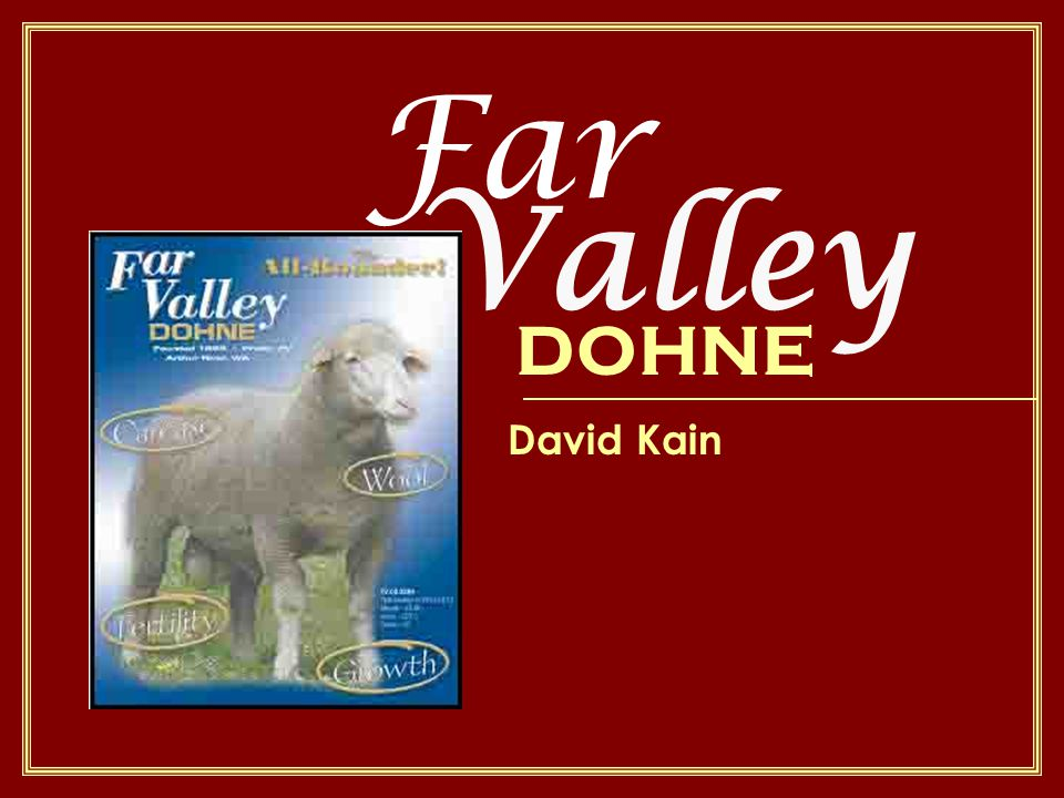 Far David Kain Valley DOHNE