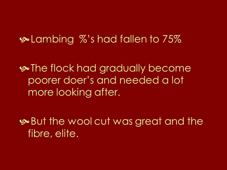  Lambing %'s had fallen to 75%  The flock had gradually become poorer doer's and needed a lot more looking after.