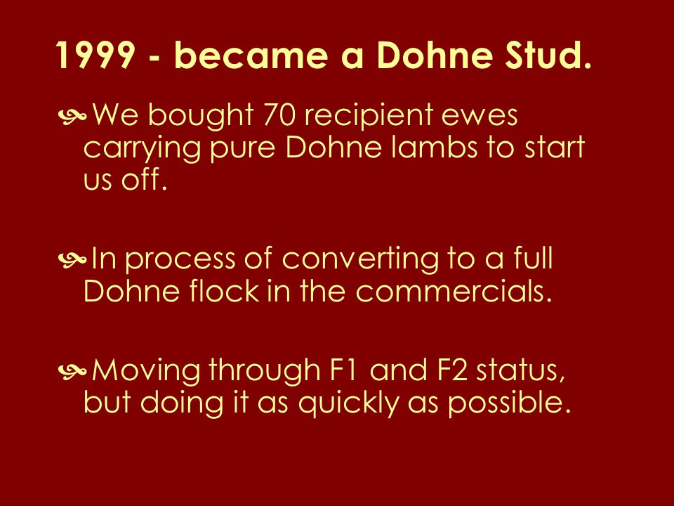 1999 - became a Dohne Stud.