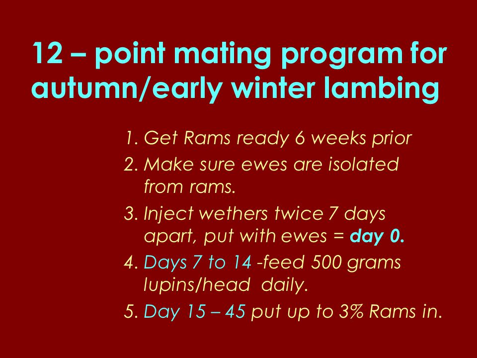 12 – point mating program for autumn/early winter lambing 1.Get Rams ready 6 weeks prior 2.Make sure ewes are isolated from rams.