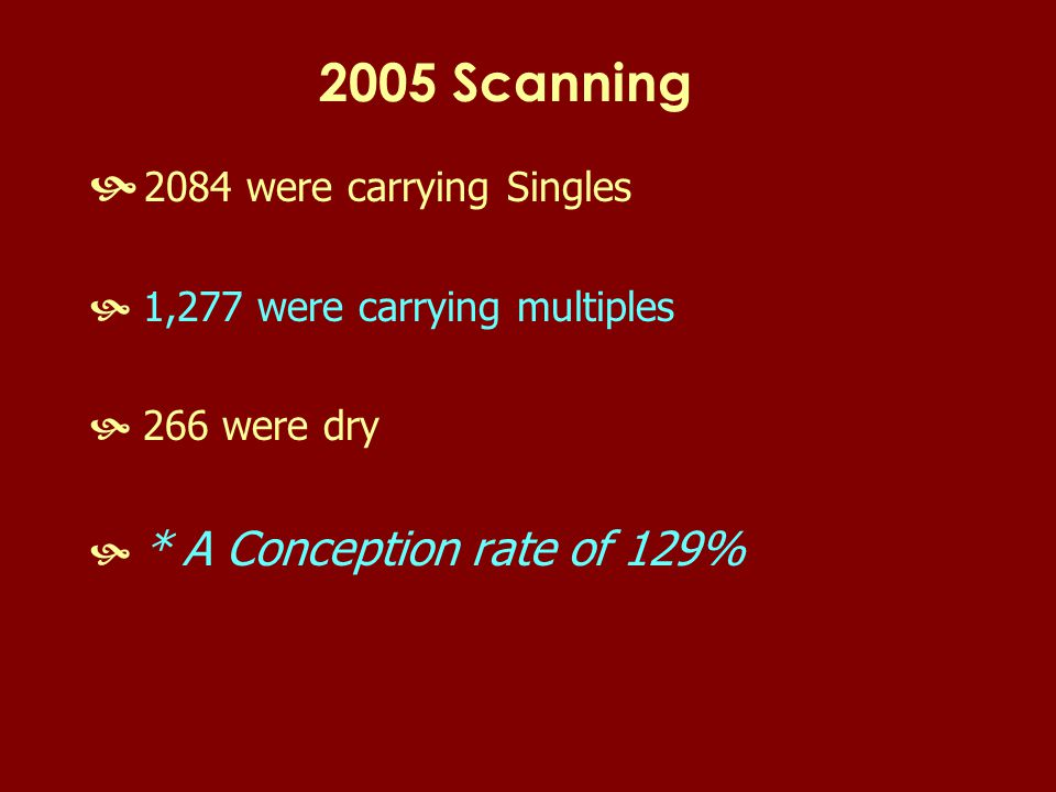 2005 Scanning  2084 were carrying Singles  1,277 were carrying multiples  266 were dry  * A Conception rate of 129%