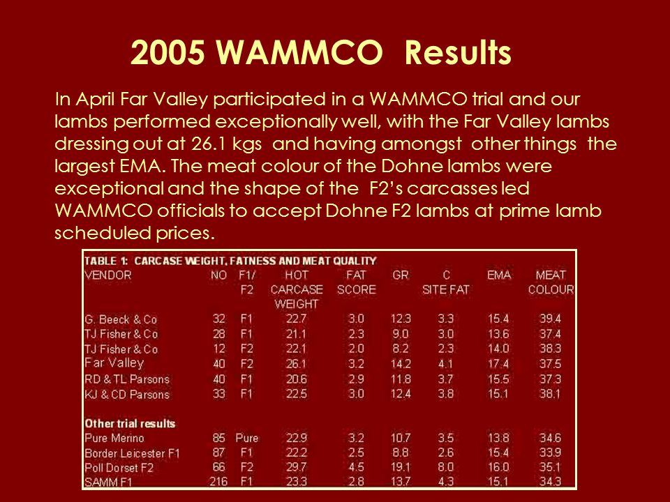 2005 WAMMCO Results In April Far Valley participated in a WAMMCO trial and our lambs performed exceptionally well, with the Far Valley lambs dressing out at 26.1 kgs and having amongst other things the largest EMA.