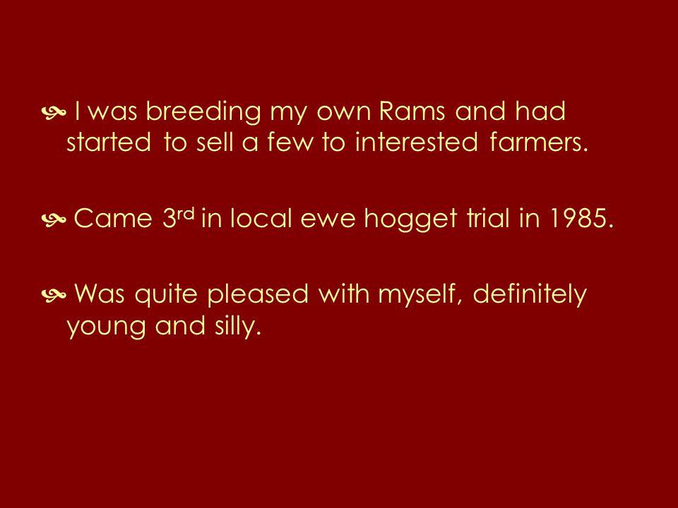 FV04 0911 with Ewe Lambs