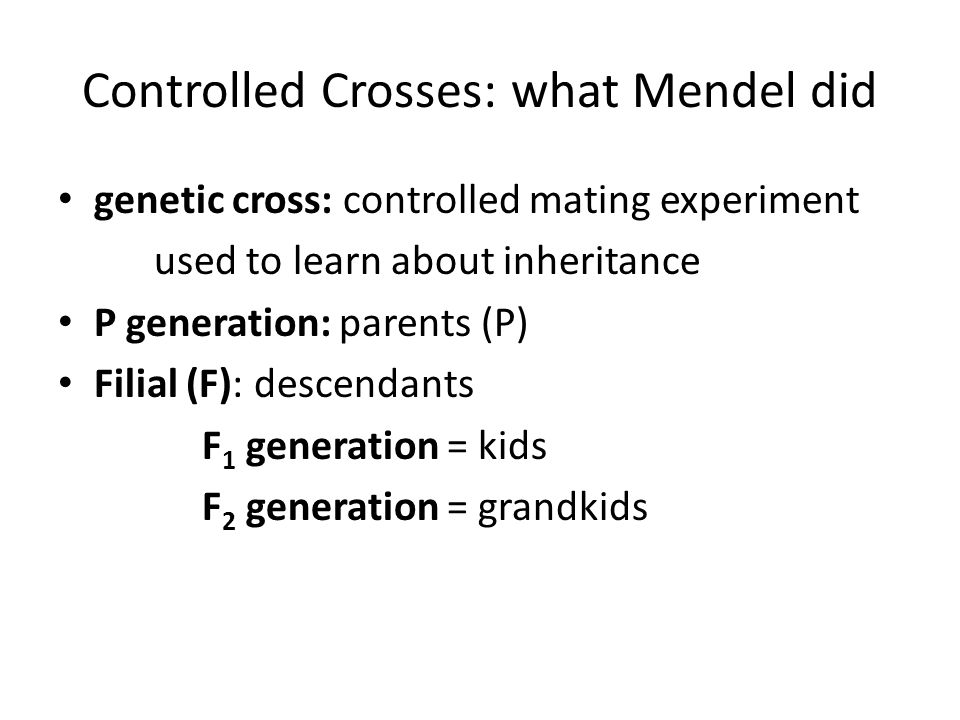 Controlled Crosses: what Mendel did genetic cross: controlled mating experiment used to learn about inheritance P generation: parents (P) Filial (F): descendants F 1 generation = kids F 2 generation = grandkids