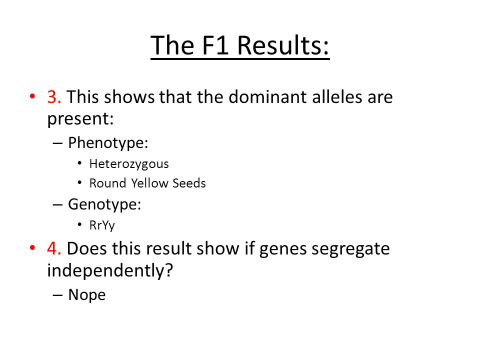 The F1 Results: 3. This shows that the dominant alleles are present: – Phenotype: Heterozygous Round Yellow Seeds – Genotype: RrYy 4. Does this result