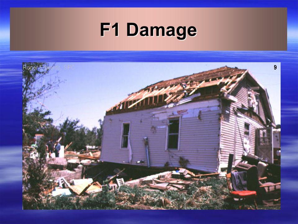 F0 Damage