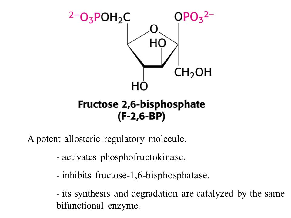 A potent allosteric regulatory molecule. - activates phosphofructokinase. - inhibits fructose-1,6-bisphosphatase. - its synthesis and degradation are