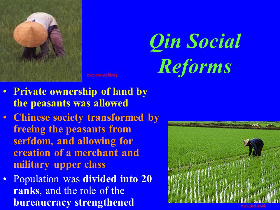 Qin Social Reforms Private ownership of land by the peasants was allowed Chinese society transformed by freeing the peasants from serfdom, and allowin