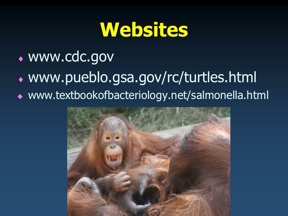 Websites   www.cdc.gov   www.pueblo.gsa.gov/rc/turtles.html   www.textbookofbacteriology.net/salmonella.html
