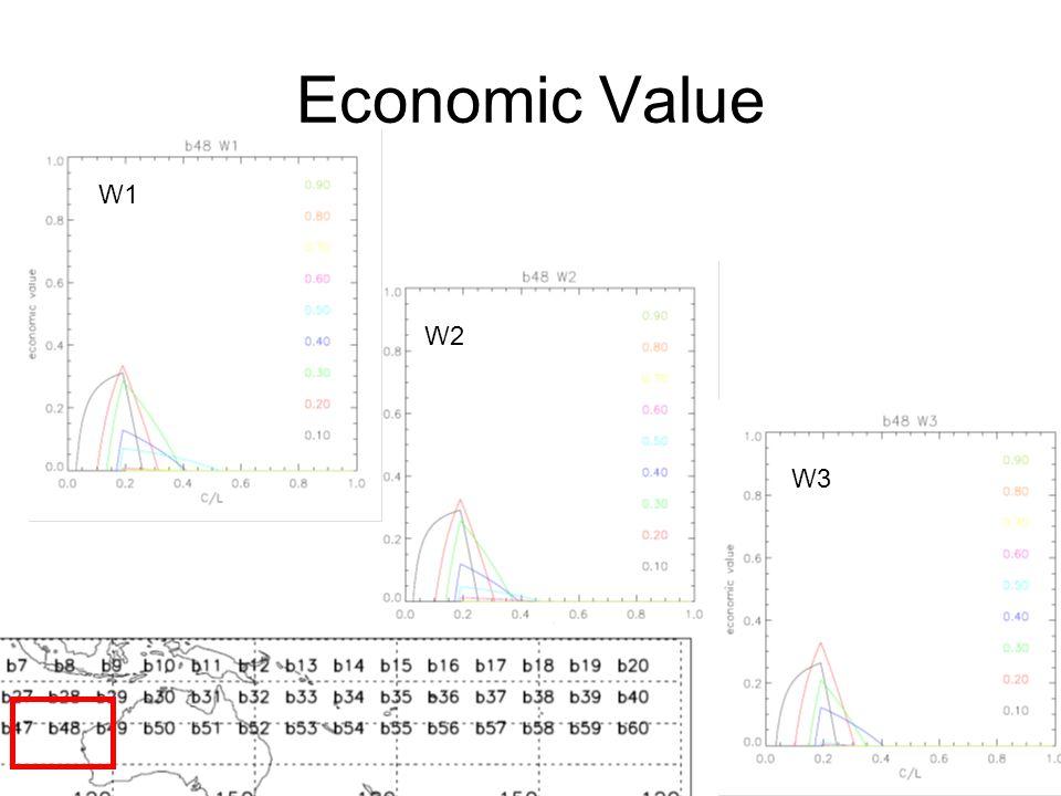 Economic Value W1 W2 W3