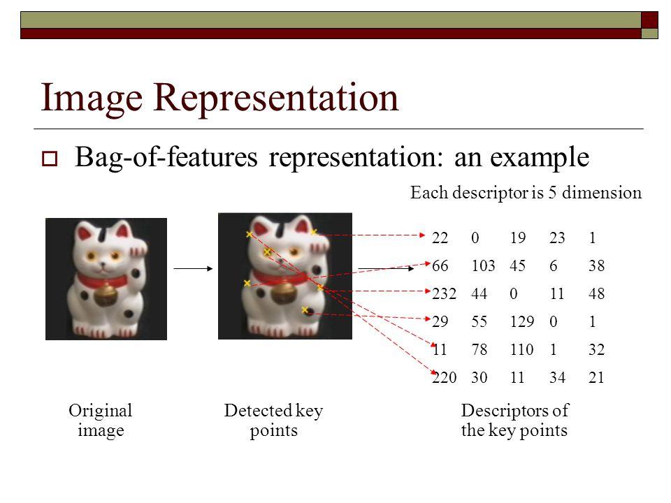 Image Representation 22019231 6610345638 2324401148 295512901 1178110132 22030113421 Descriptors of the key points Original image Detected key points  Bag-of-features representation: an example Each descriptor is 5 dimension