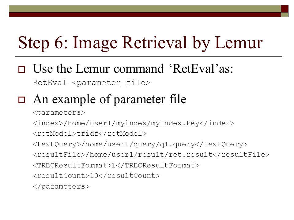 Step 6: Image Retrieval by Lemur  Use the Lemur command 'RetEval'as: RetEval  An example of parameter file /home/user1/myindex/myindex.key tfidf /home/user1/query/q1.query /home/user1/result/ret.result 1 10