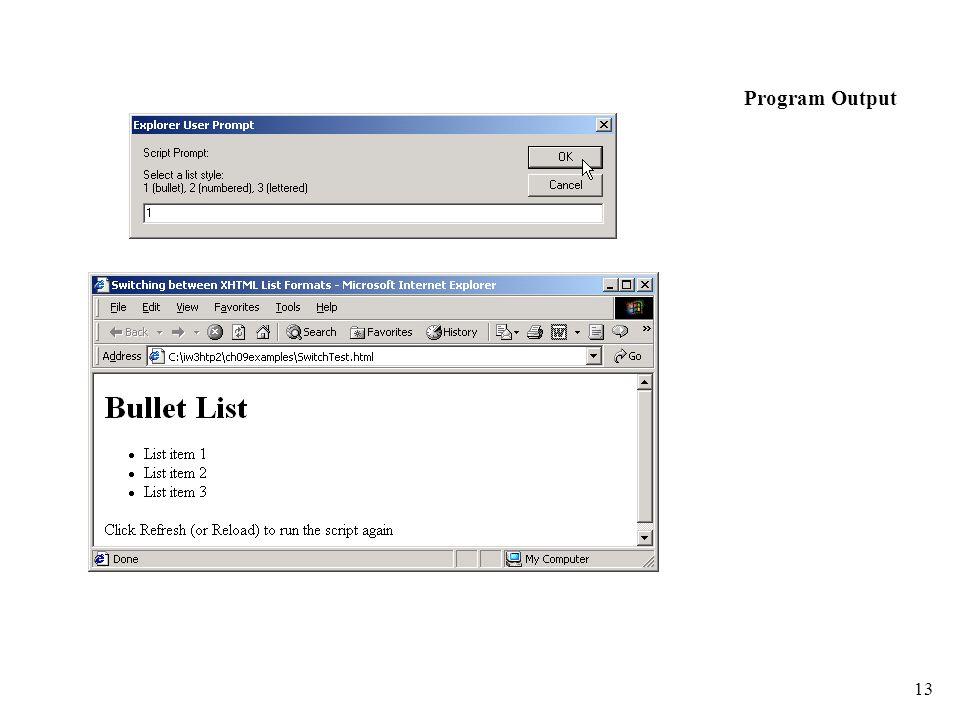 13 Program Output