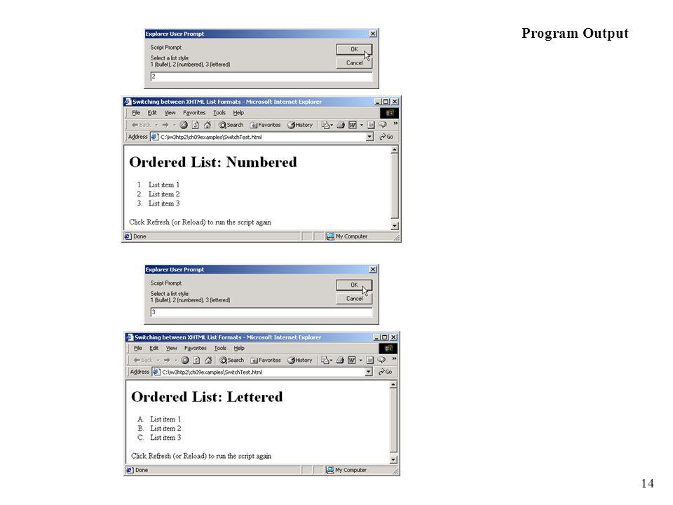 14 Program Output
