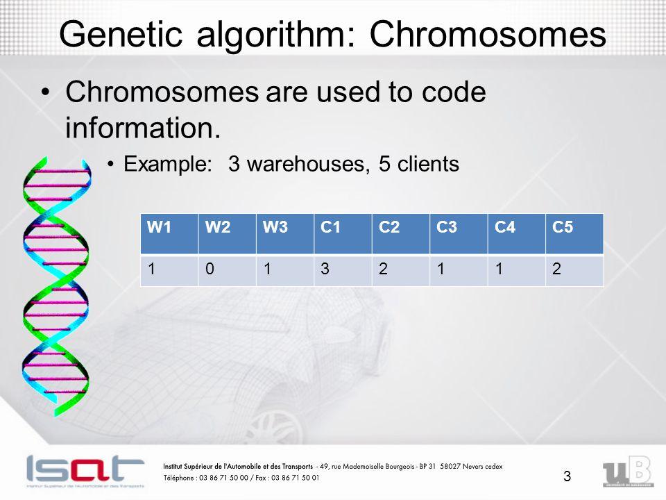 3 Genetic algorithm: Chromosomes Chromosomes are used to code information.