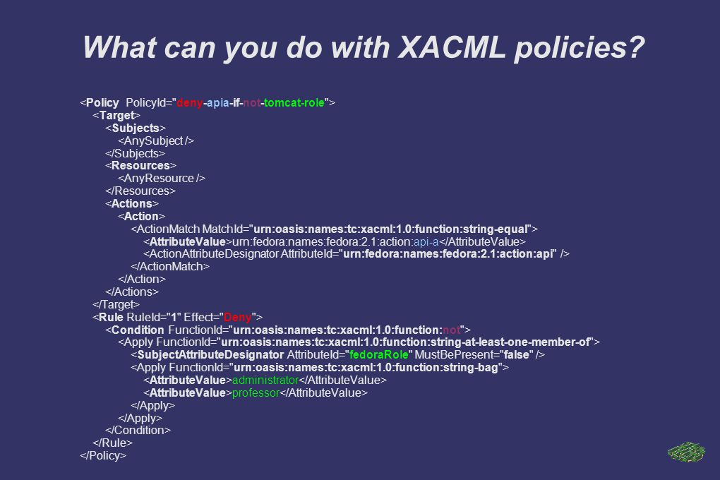 What can you do with XACML policies.