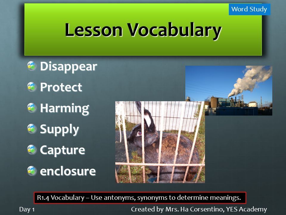 Lesson Vocabulary DisappearProtectHarmingSupplyCaptureenclosure Created by Mrs.
