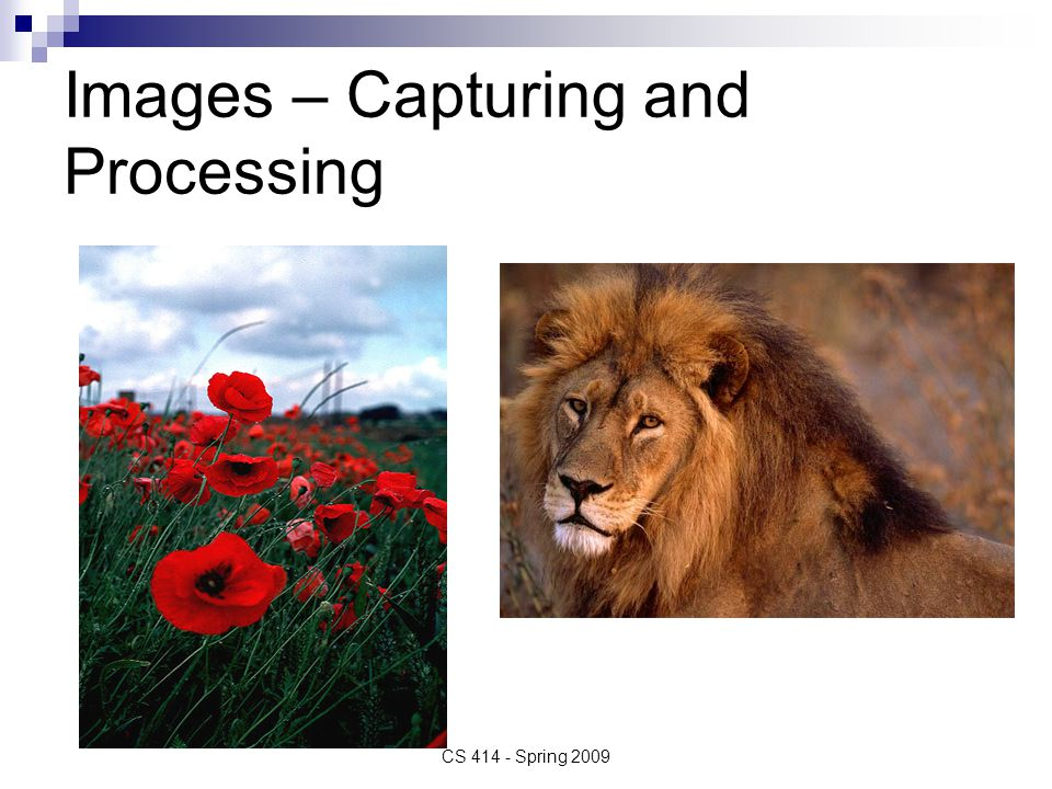 Images – Capturing and Processing CS 414 - Spring 2009