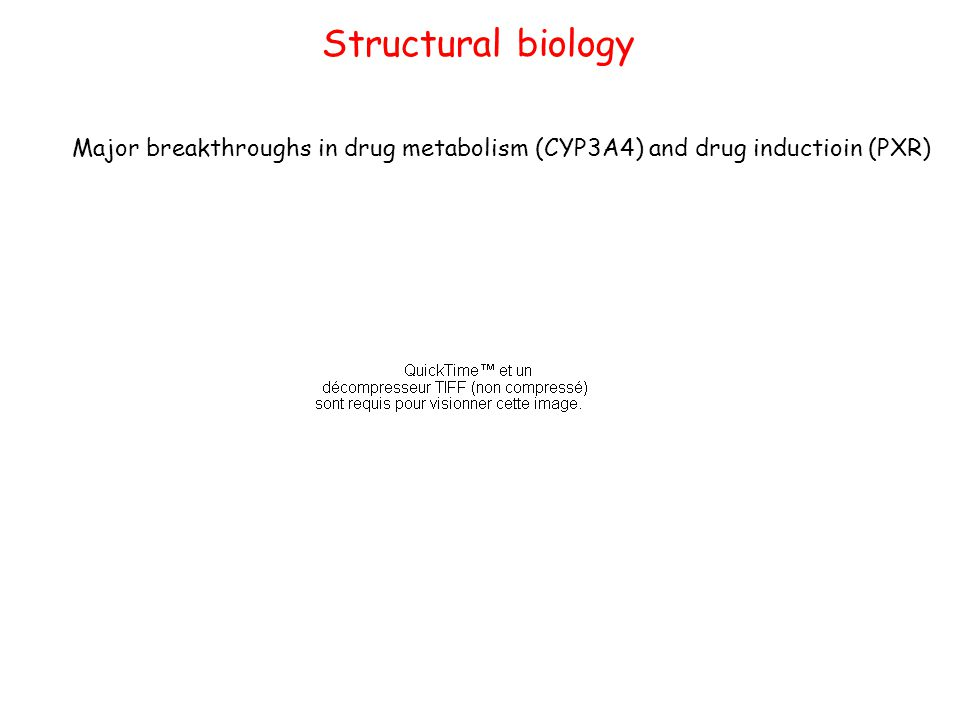 Structural biology Major breakthroughs in drug metabolism (CYP3A4) and drug inductioin (PXR)
