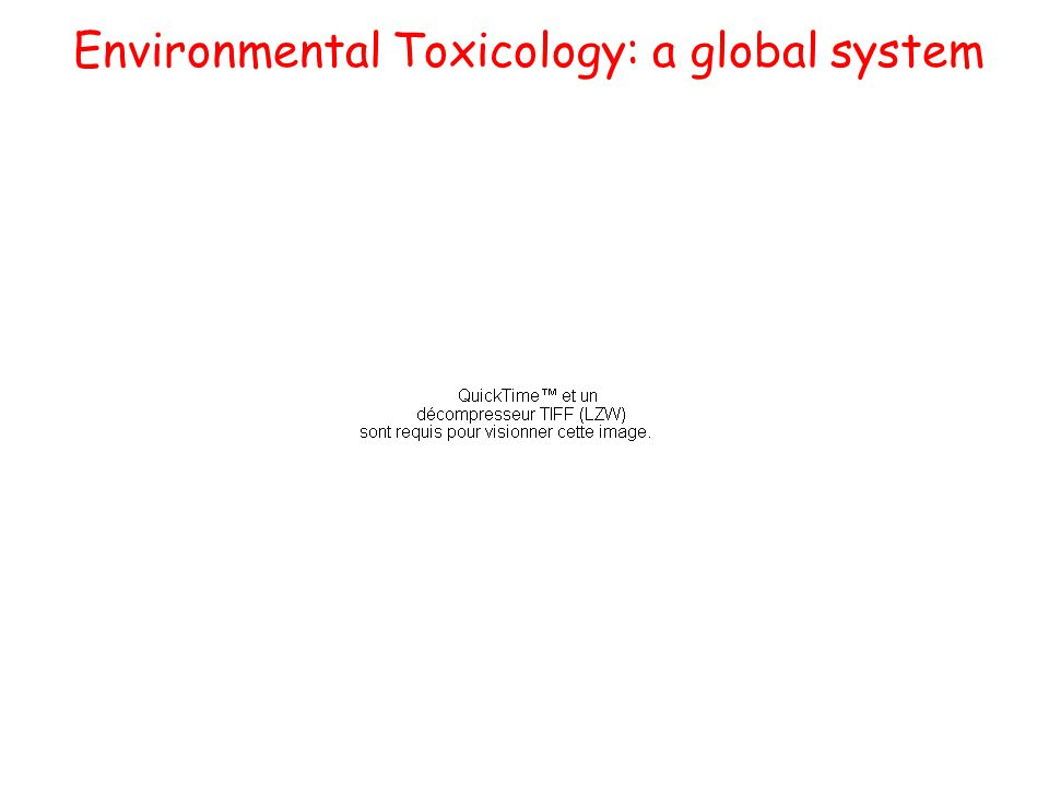 Clinical response Preclinical response contaminants Internal contamination biomarkers New technologies Internal dose External contact exposure Environmental Toxicology: a global system sources Can we predict toxicity?