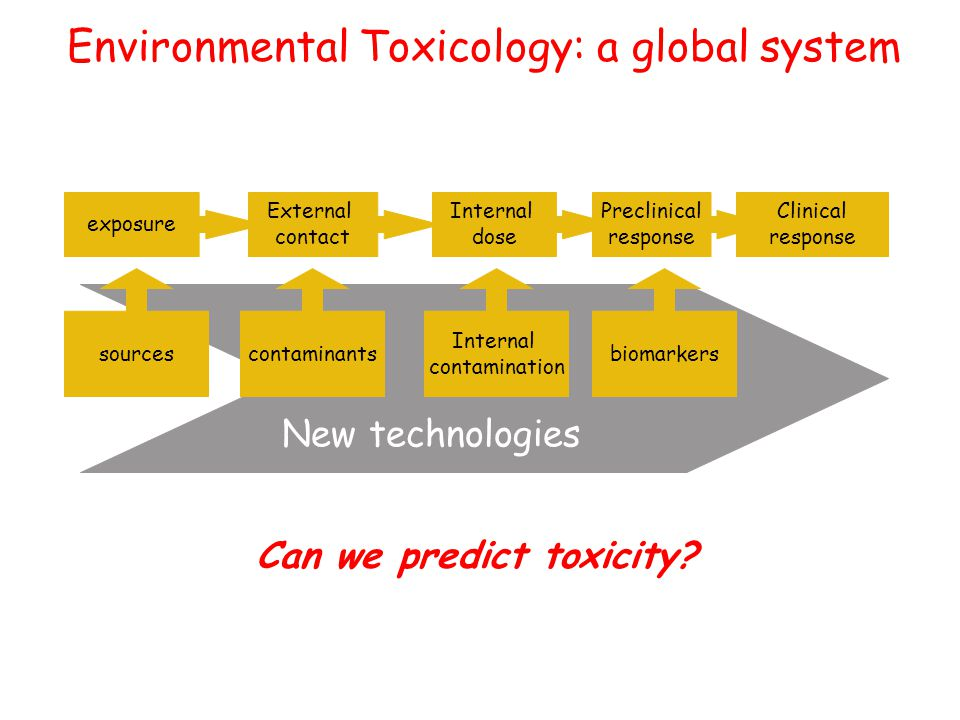 Clinical response Preclinical response contaminants Internal contamination biomarkers New technologies Internal dose External contact exposure Environmental Toxicology: a global system sources Can we predict toxicity
