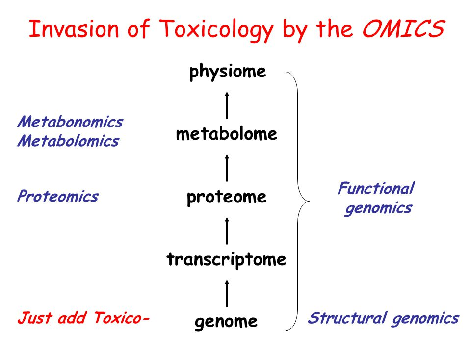 The Dioxin Receptor System: lessons from genomics Xenobiotics metabolism Hundreds maybe Thousands of ligands: xeno or endo Cell cycle Cell migration Lipid metabolism Large number of toxicogenomics studies; Marchand et al, Mol Pharmacol, 2005