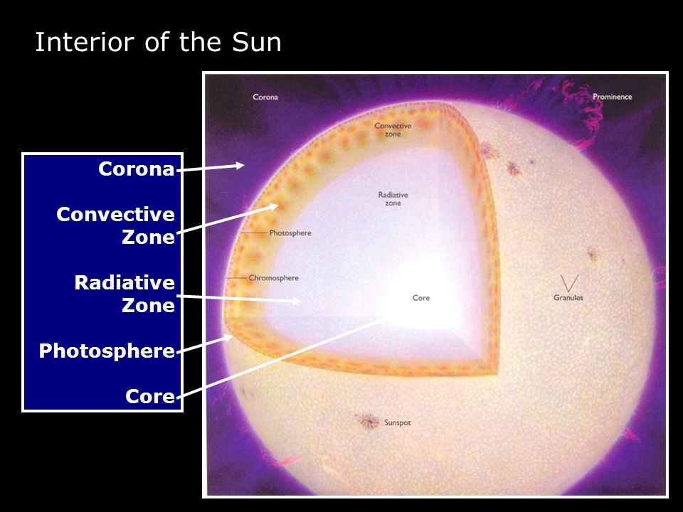 Corona Convective Zone Radiative Zone Photosphere Core Interior of the Sun