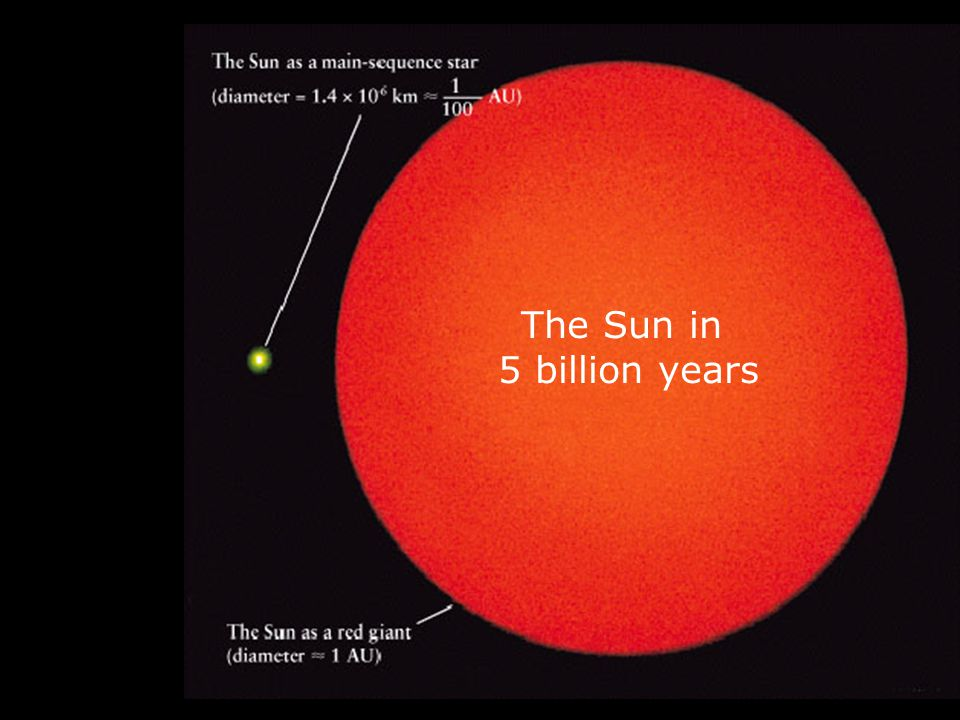 The Sun in 5 billion years