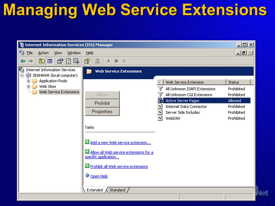 Managing Web Service Extensions