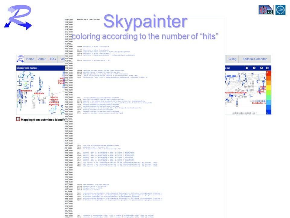 Skypainter coloring according to the number of hits
