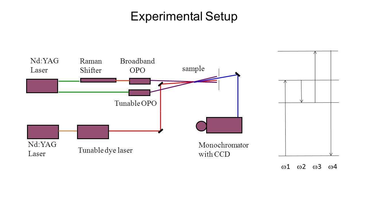 Experimental Setup Nd:YAG Laser Nd:YAG Laser Raman Shifter Broadband OPO Monochromator with CCD sample Tunable dye laser Tunable OPO