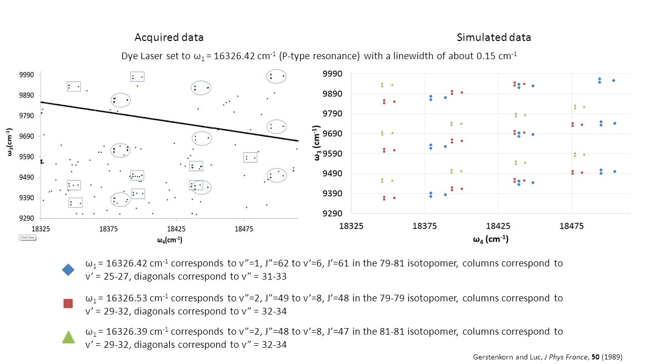 Acquired dataSimulated data ω 1 = 16326.42 cm -1 corresponds to v =1, J =62 to v'=6, J'=61 in the 79-81 isotopomer, columns correspond to v' = 25-27, diagonals correspond to v = 31-33 ω 1 = 16326.53 cm -1 corresponds to v =2, J =49 to v'=8, J'=48 in the 79-79 isotopomer, columns correspond to v' = 29-32, diagonals correspond to v = 32-34 ω 1 = 16326.39 cm -1 corresponds to v =2, J =48 to v'=8, J'=47 in the 81-81 isotopomer, columns correspond to v' = 29-32, diagonals correspond to v = 32-34 Gerstenkorn and Luc, J Phys France, 50 (1989) Dye Laser set to ω 1 = 16326.42 cm -1 (P-type resonance) with a linewidth of about 0.15 cm -1
