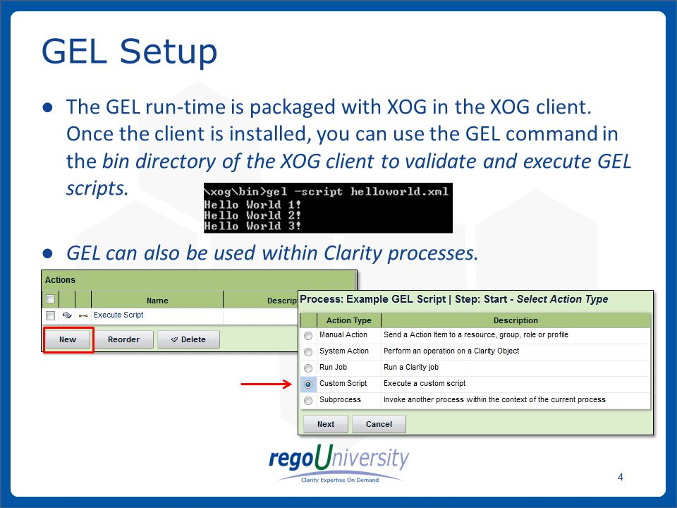 www.regoconsulting.comPhone: 1-888-813-0444 15 Custom Action GEL scripts associated with processes have the following parameters available to them: ● Object instance ID If no object is associated with the process, the ID is -1.